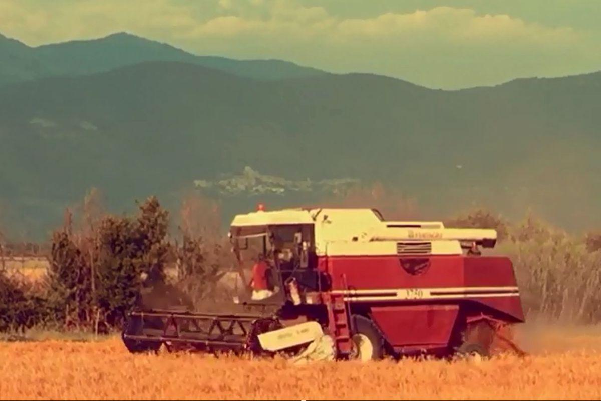 Da quest'anno siamo Birrificio Agricolo